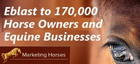 Marketing Horses