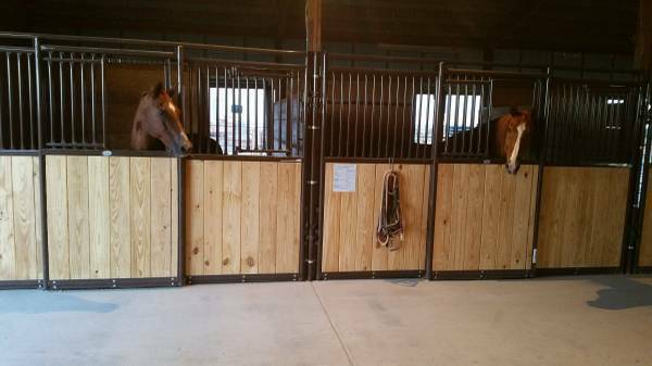 Horse Boarding Stable