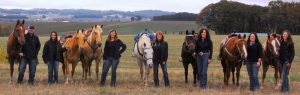 Oregon Horse Property