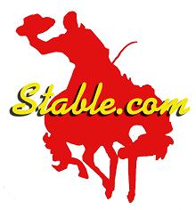 Stable.com Logo