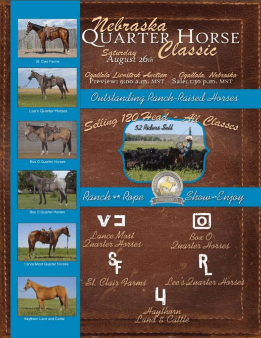 St. Clair Western Performance Horses, Khoka Missouri