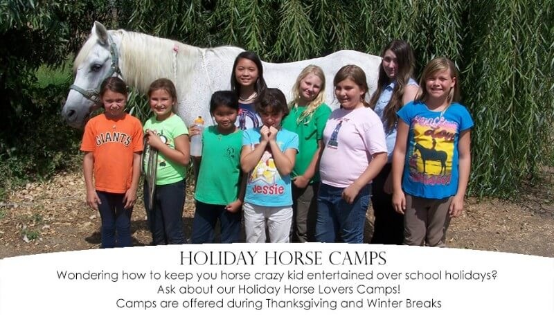 Horse Riding Lessons near Sacramento, California