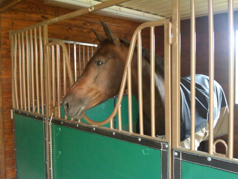American Stalls - Bold. Simple. Secure. - Portable Horse Stalls and Stall Gates