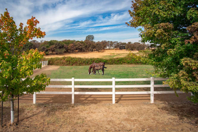 First Class Equestrian Facility in California's Gold Country