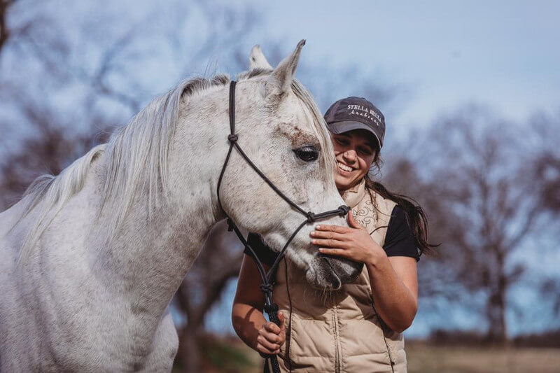 Ricochet Stables - Arabian Breeder, Trainer and Horse Sales in Texas