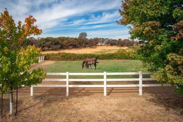 Northern California Horse Property