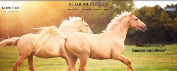 Arizona Equine Property by Lori Ross Doa