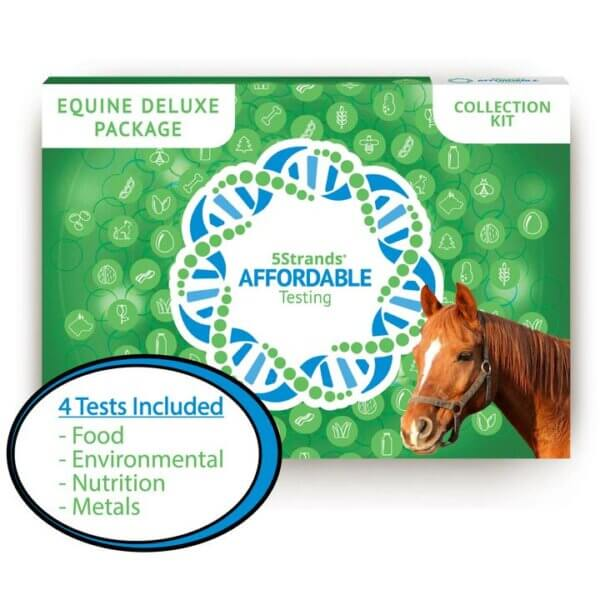 5 Strands Affordable Equine Tests